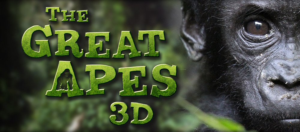 The Great Apes 3D nWave 01